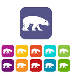 bear icons set vector image