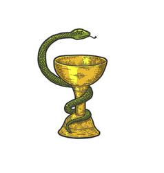bowl hygieia symbols pharmacy sketch vector image