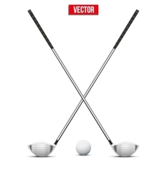 Golf clubs and ball vector image