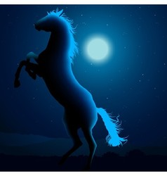Horse Silhouetted In Blue Moon Light vector