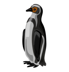 penguin icon cartoon style vector image