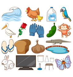 Set many animals and other items on white vector