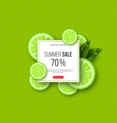 summer sale banner with sliced lime pieces leaves vector image