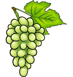 White grapes fruit cartoon vector