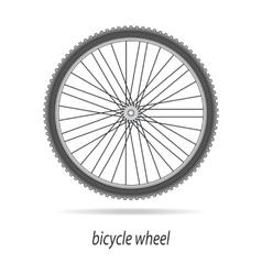 Bicycle wheel isolated vector image