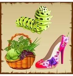 Symbols of summer shoe vegetables and centipede vector image