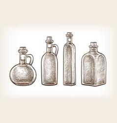 bottles of olive oil vector image