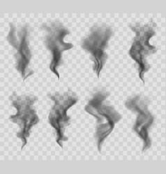 Realistic smoke or steam in gray colors isolated vector