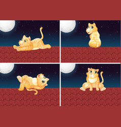 set of cat on the roof vector image