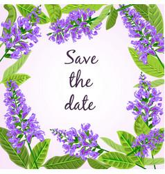 frame flowering sage vector image vector image