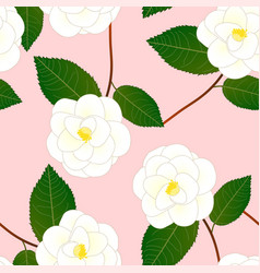 White camellia flower on pink background vector