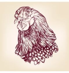 chicken vintage hand drawn vector image vector image