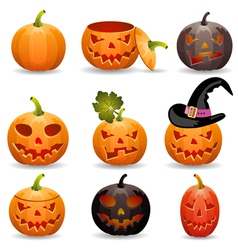Collect Pumpkin for Halloween vector
