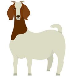farming set boer goat breed vector image