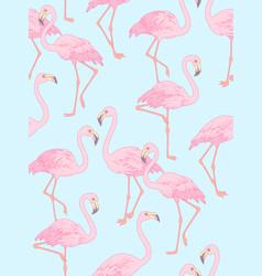 flamingo on blue vector image