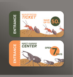 Insect and bird ticket design with ant beetle vector