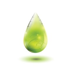 Olive oil drop vector