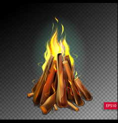 Realistic burning bonfire with wood on vector