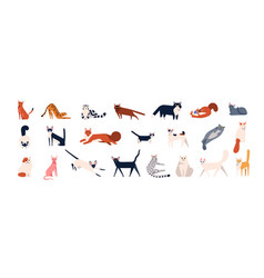 bundle adorable cats various breeds sitting vector image