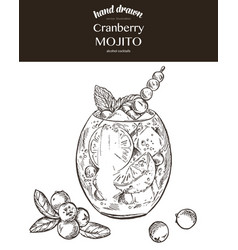 Cranberry mojito sketch vector
