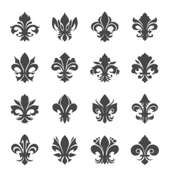 French royal lily flowers vector