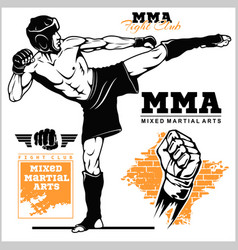 Fighters martial mixed arts sport club emblem vector