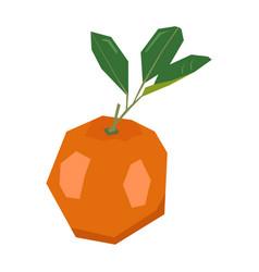 Isolated geometric tangerine vector