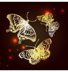 sketching of butterflies vector image
