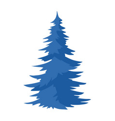 Spruce natural icon blue tree vector