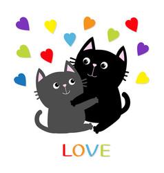 Black gray cat hugging couple family rainbow vector