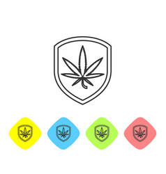 grey line shield and marijuana or cannabis leaf vector image