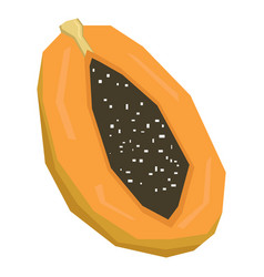 Isolated cut papaya vector