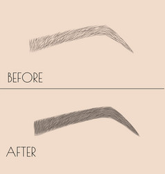 Permanent makeup correction of the shape and vector