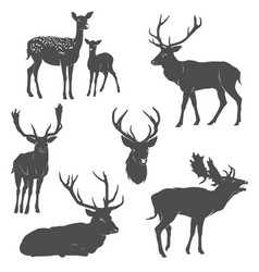 set of deer silhouettes in different poses vector image