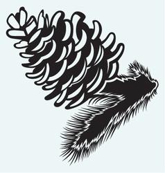 Pine strobile vector image vector image