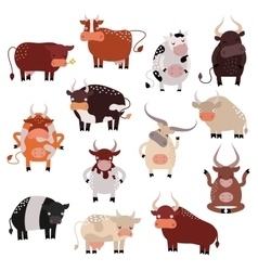 Cartoon cow action set with cute lovely heifer in vector image