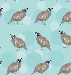 Seamless pattern with funny cute quail bird on a vector
