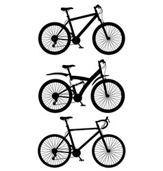 bicycle 15 vector image