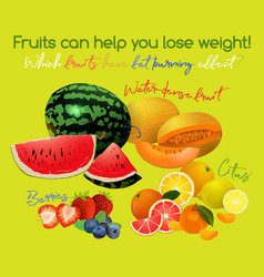 Fat burning fruits vector