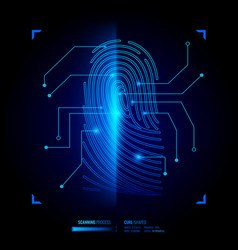 Finger print verification vector