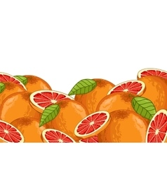 Grapefruit composition Isolated vector image vector image