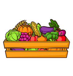 harvest of box with seasonal fruits vector image