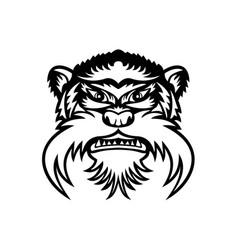Head emperor tamarin monkey front view mascot vector