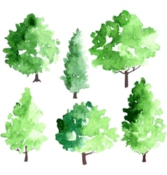 set of different deciduous trees vector image