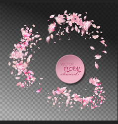 flying petals vector image vector image