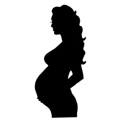 pregnant woman isolated vector image vector image