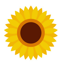 cute sunflower flower icon in a flat style vector image