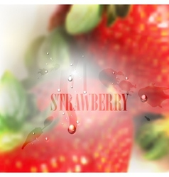 Fresh blurred food background with strawberries vector