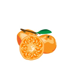 Orange Paint By vector image