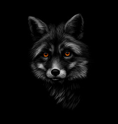 portrait a fox head on a black background vector image